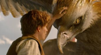 """For a Film With So Much Frenzied Action, """"Fantastic Beasts and Where To Find Them"""" is Somehow…Dull"""